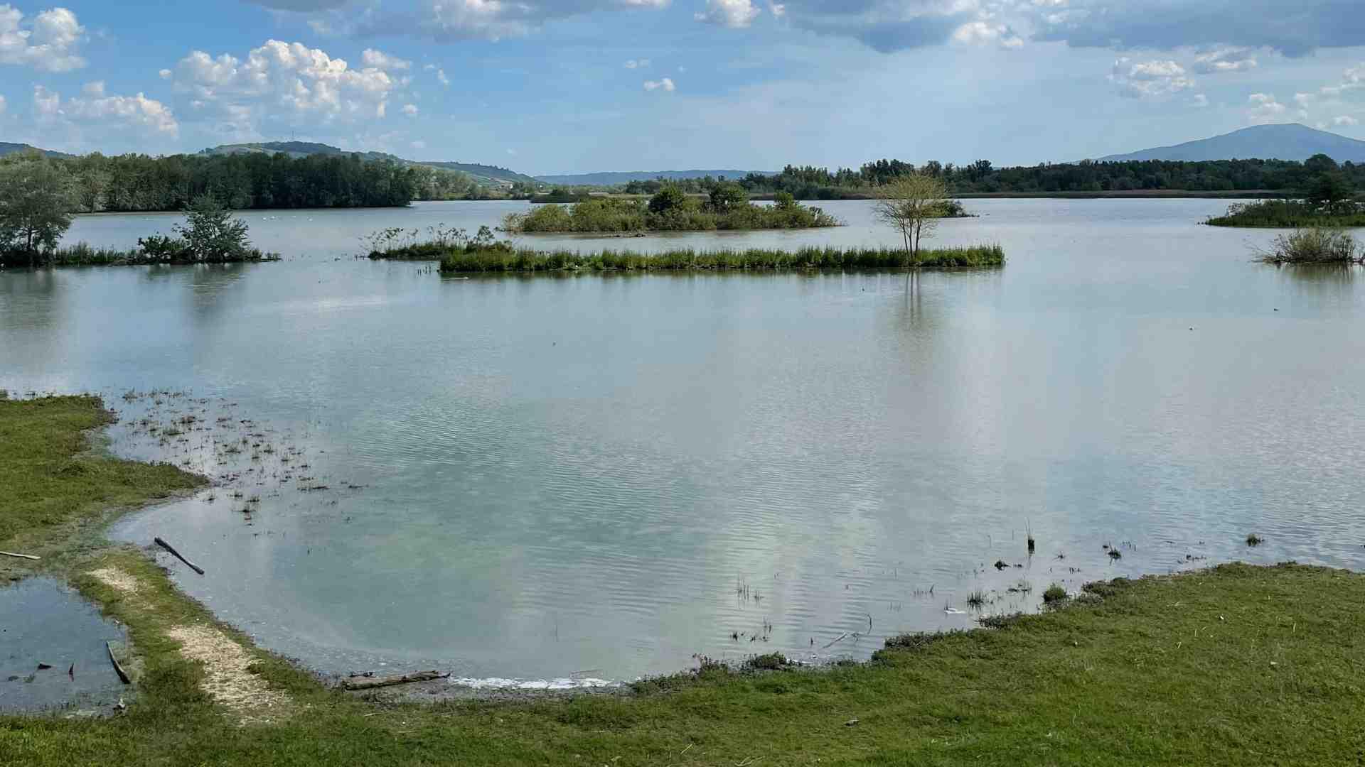 oasi-wwf-lago-di-alviano-01